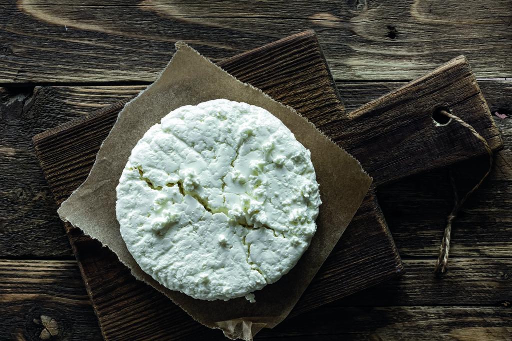 laboratorio di formaggio